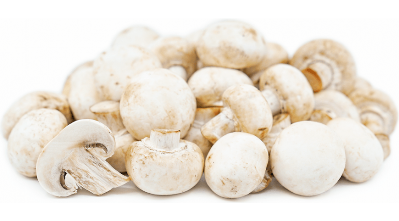 Fresh White Button Mushrooms