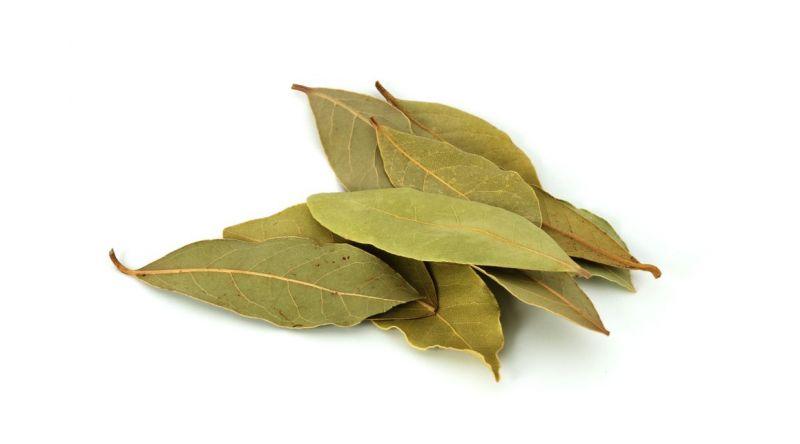 Bay Leaf   HERBS