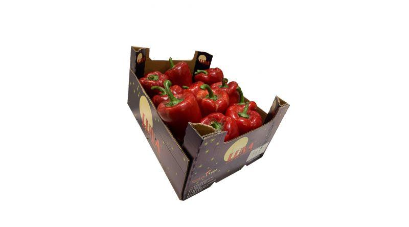 Fresh Red Pepper salads