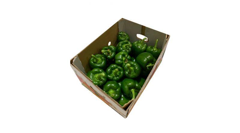 Fresh Green Pepper SALADS