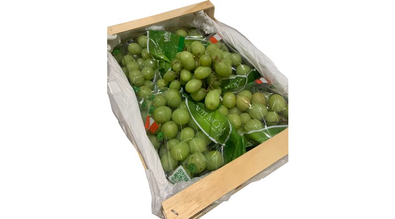 Green Grapes (Seedless) Box - 4.5kg Per Box