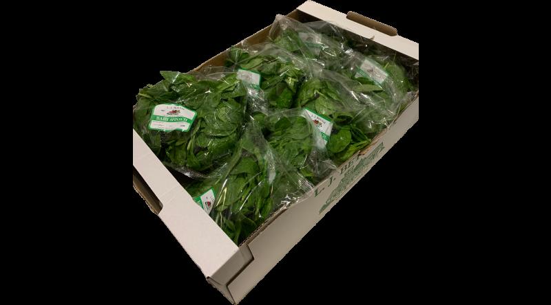 Fresh Baby Spinach Salads