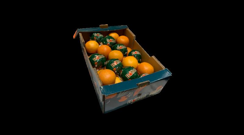 Pink Grapefruit Box - 40 Per Box
