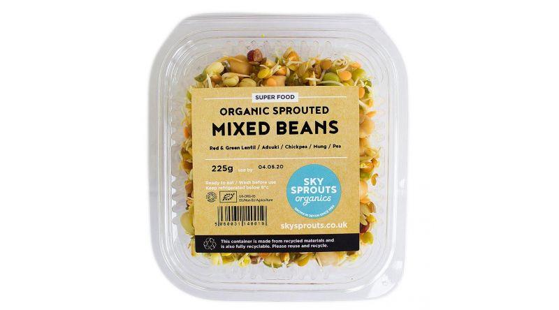 Fresh Fine Beans VEGETABLES