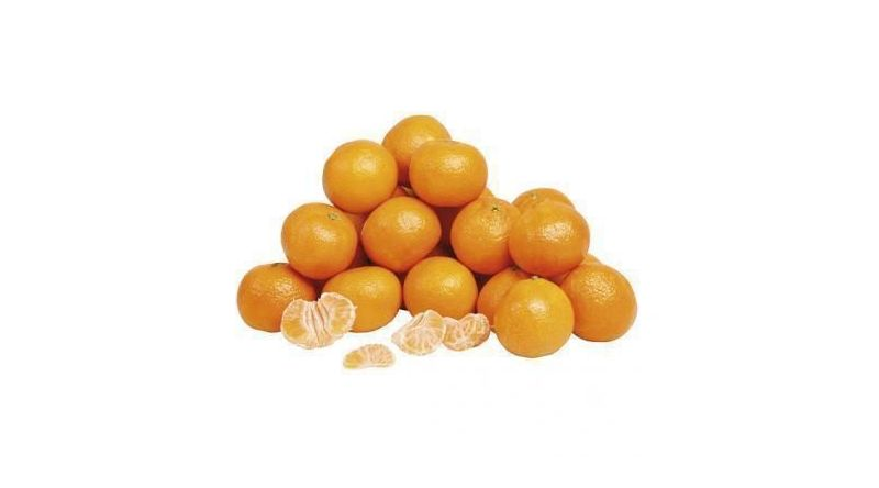 Fresh Seedless  satsuma