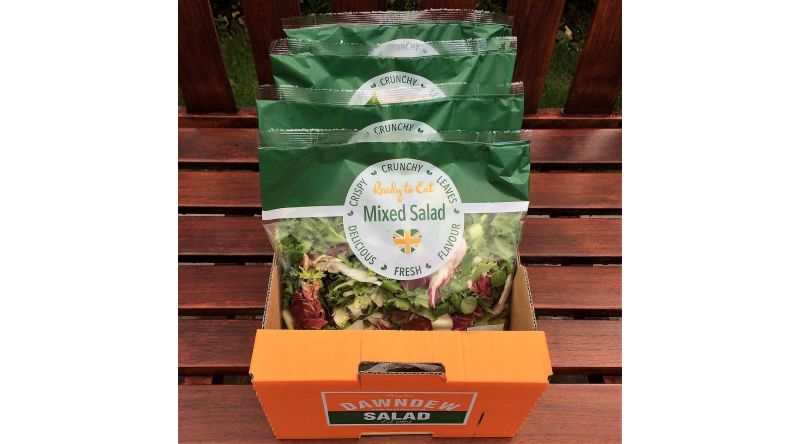 Dawndew Crispy Mixed Lettuce \\ Salad Box -  4 Per Box