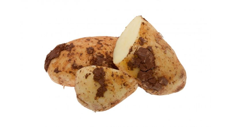 Cyprus Potatoes 1kg