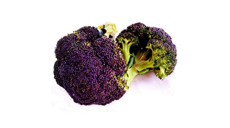 Broccoli Head  Fresh VEGETABLES