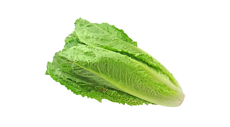 Romaine Lettuce - Each