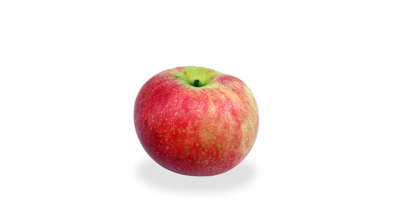 Early Windsors Apple  Bag of 5