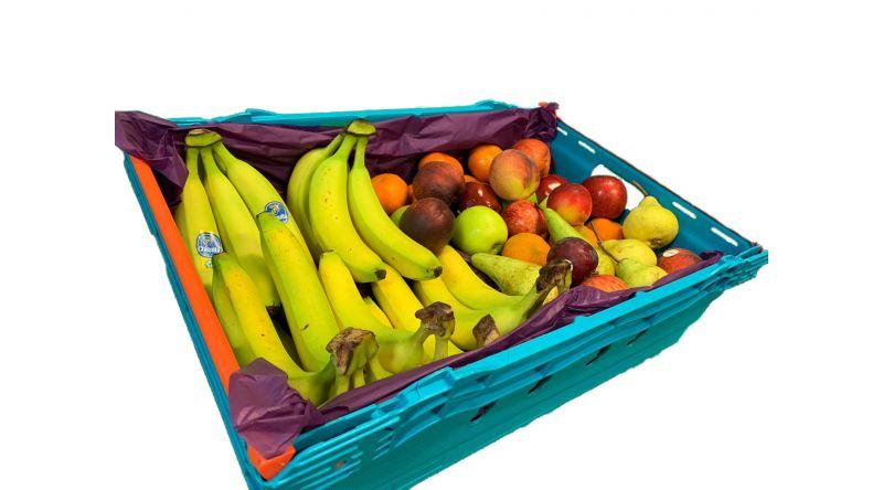 Fruit Create 40