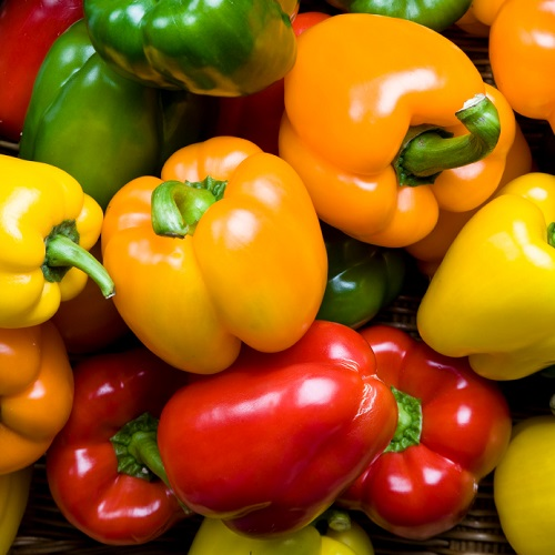 Are Peppers A Fruit Or Veg? // Facts About Peppers //  What's The Difference Between Red, Yellow and Green Peppers?