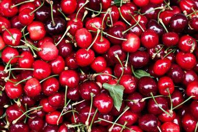 Everything To Do With Cherries | Facts About Cherries | Top 10