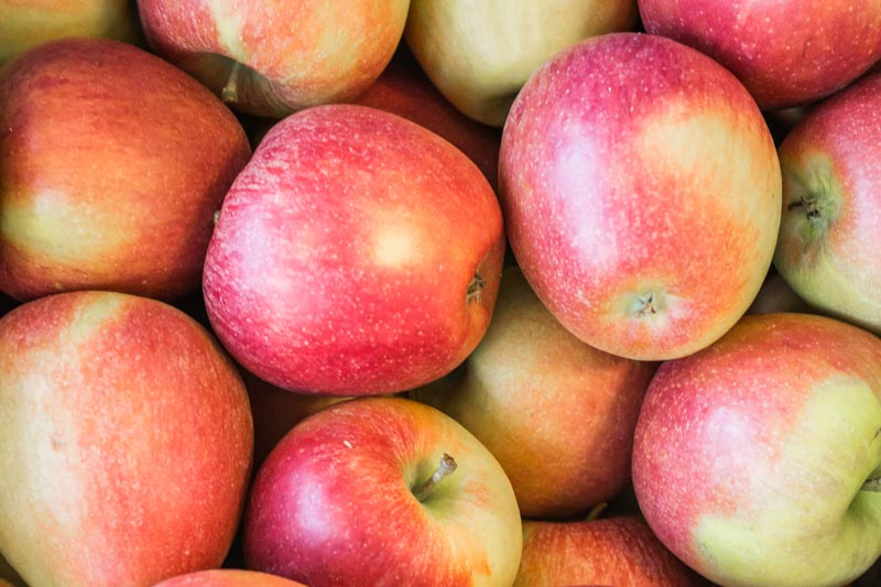 Braeburn Apples | Apples In General | Facts About Apples